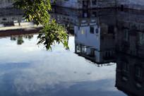 济南五府池子倒影