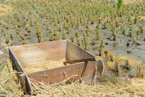 收割后的稻田及拌桶