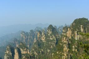 张家界森林公园杨家界的峰林 JPG