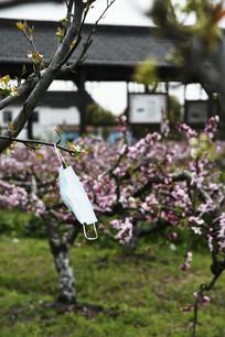桃花和口罩