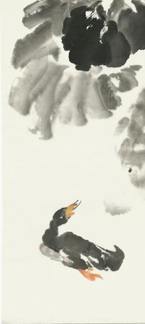 鸭子与荷塘国画