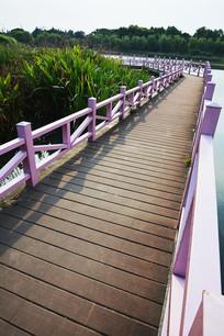 福田湿地公园网红桥