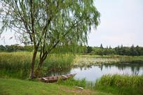 绿树渔船景观