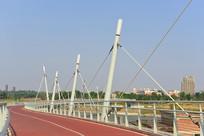 成都府河上的人行桥