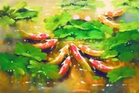 荷花池油画