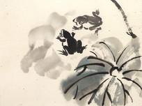 池塘里的青蛙写意水墨画