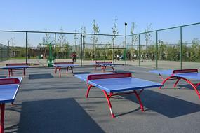 户外乒乓球场
