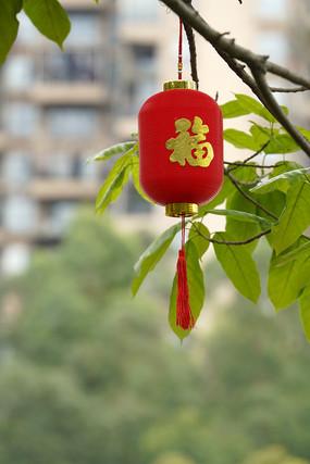 中國紅喜慶福字紅燈籠