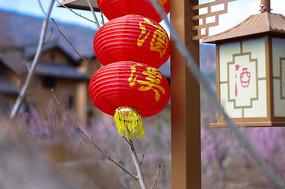 花田酒溪的民宿紅燈籠