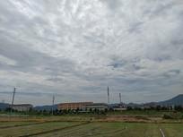 晴空万里的乡村田野