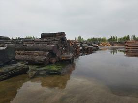 木材堆场图片