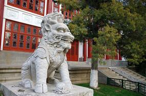 北京大学校内石狮子