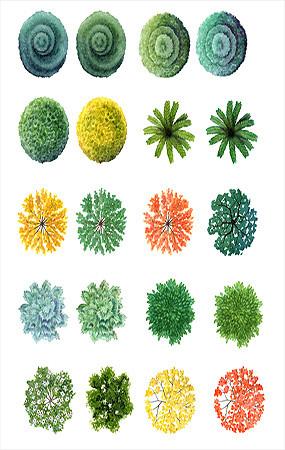 植物平面手绘PS素材