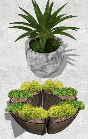 植物盆景素材