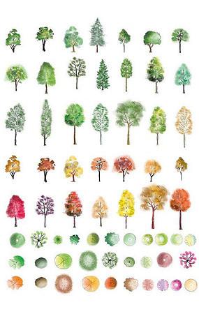 植物立面PS素材