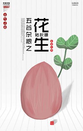花生瓜子海报
