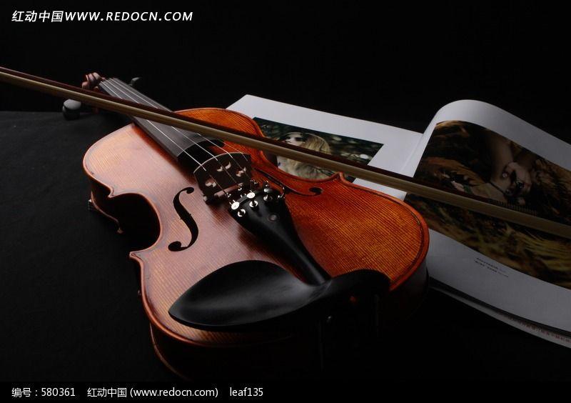 violin 小提图片