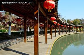 青枫公园的美丽长廊