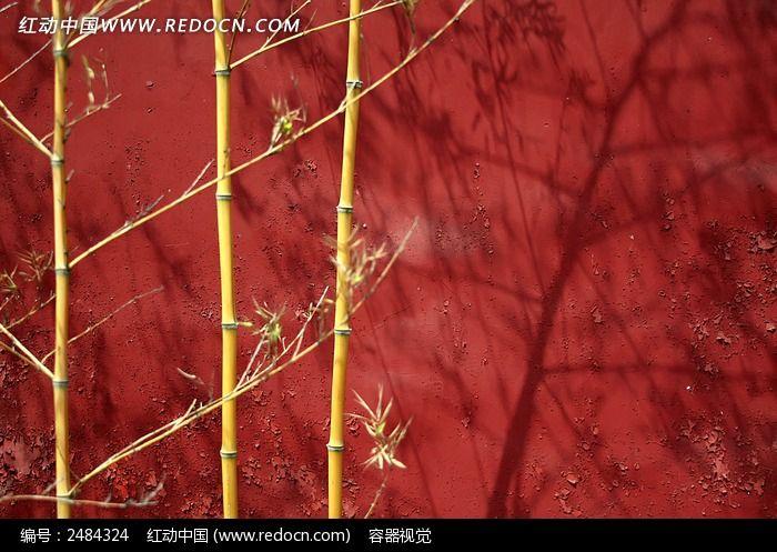 红墙竹影图片