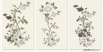 矢量花朵无框画图库