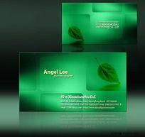 绿色环保名片设计欣赏PSD