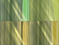 绿色光线背景婚礼视频素材