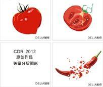 西红柿整体与侧面矢量图和脆辣椒矢量图(CDR)