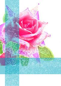 玫瑰花T恤图案