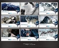 狼企业宣传展板
