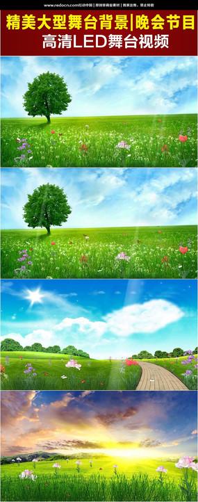 高清草地风景图片