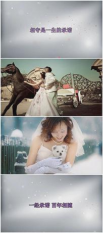 守候幸福婚礼视频模板