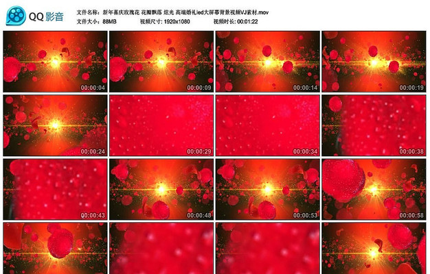 玫瑰花花瓣飘落ed大屏幕背景视频VJ素材