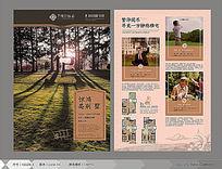 地产别墅广告DM单页设计