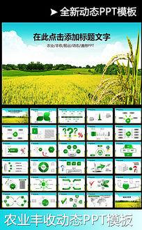 农业水稻种子PPT模板