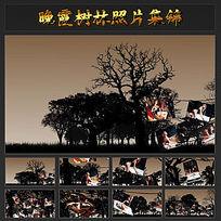 晚霞树林照片集锦视频ae模板