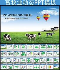 农业畜牧业PPT模板