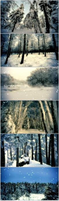 冬天雪地雪景飘雪森林