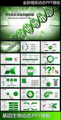 精致DNA基因生物PPT模板