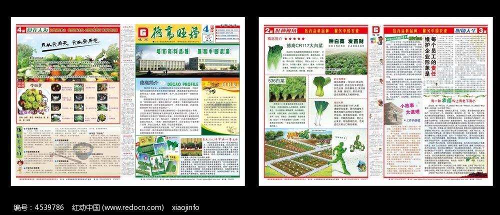 农产品企业报纸设计图片