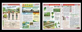 农产品企业报纸设计
