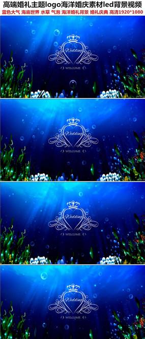 高端海洋主题婚礼LOGOled背景视频素材