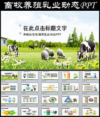 养殖畜牧业PPT模板