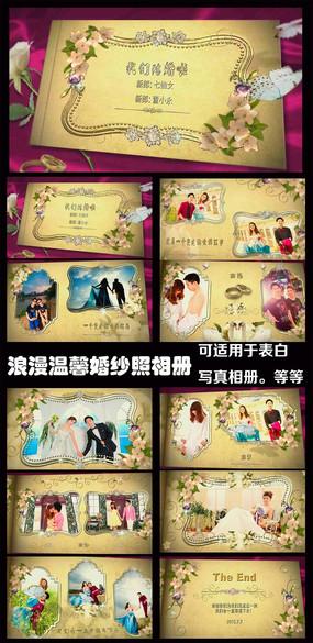 浪漫温馨婚玫瑰纱照AE电子相册