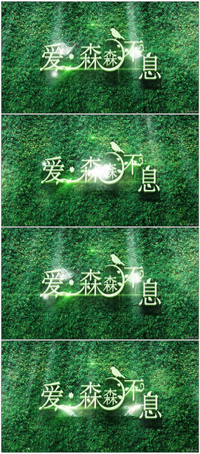 梦游仙境主题婚礼森林系