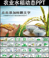 农业生产水稻播种新农村建设动态PPT模板