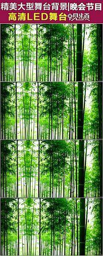 唯美自然风景竹林有音乐视频素材