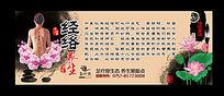 经络中医文化海报