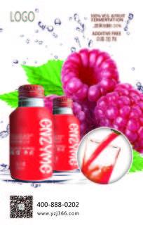 树莓酵素海报设计