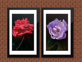 现代花卉油画装饰画