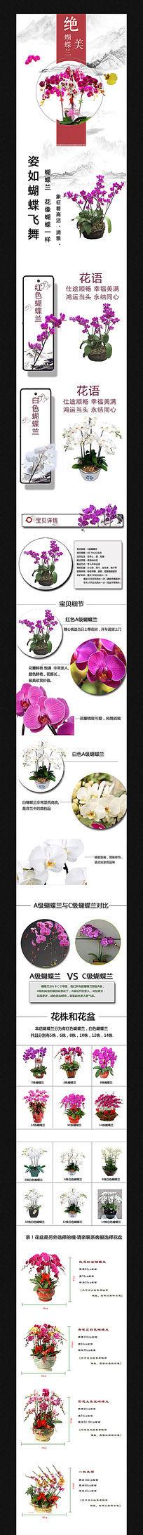 淘宝鲜花盆景盆栽详情页模板